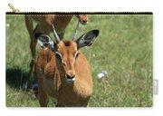 Grassland Deer Carry-all Pouch