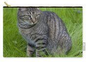 Gray Cat In Vivid Green Grass Carry-all Pouch
