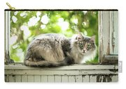 Gray Cat Sitting On A Balcony Carry-all Pouch