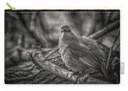 Gray Catbird Carry-all Pouch