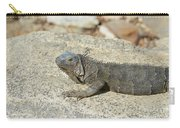 Gray Iguana Sunning And Resting On A Large Rock Carry-all Pouch