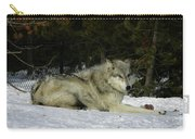 Gray Wolf 5 Carry-all Pouch