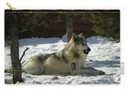 Gray Wolf 6 Carry-all Pouch