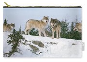 Gray Wolves Canis Lupus In A Forest Carry-all Pouch