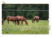 Grazing Horses - Cades Cove - Great Smoky Mountains Tennessee Carry-all Pouch