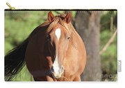 Grazing Mare  Carry-all Pouch