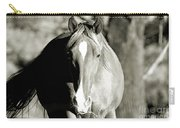 Grazing Mare - Southern Indiana Carry-all Pouch
