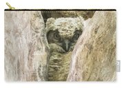 Great Horned Owl Chick Carry-all Pouch