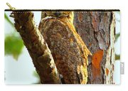 Great Horned Owl Wink Carry-all Pouch