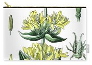great yellow gentian, Gentiana lutea Carry-all Pouch