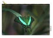Green-banded Peacock- 2 Carry-all Pouch