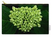 Green Bloom Carry-all Pouch