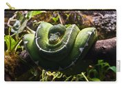 Green Boa Carry-all Pouch