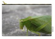 Green Bug Carry-all Pouch