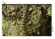 Green Centipede Carry-all Pouch