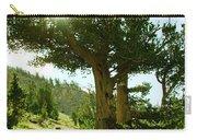 Green Desert Carry-all Pouch