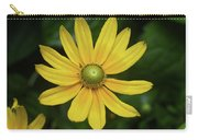 Green Eyed Daisy Carry-all Pouch