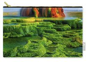 Green Fly Geyser Carry-all Pouch by Inge Johnsson