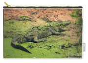 Green Gator With Border Carry-all Pouch