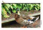 Green Head Mallard Duck 2 Carry-all Pouch