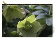 Green Hellebore Squared Carry-all Pouch