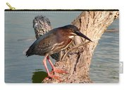 Green Heron 1 Carry-all Pouch