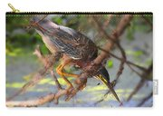 Green Heron Brazos Bend State Park Carry-all Pouch