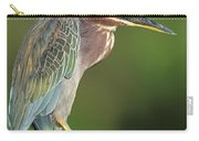 Green Heron Butorides Virescens Carry-all Pouch