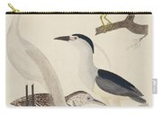 Green Heron, Night Heron, Young Heron, And Great White Heron Carry-all Pouch