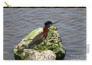 Green Heron Ruffled Feathers Carry-all Pouch