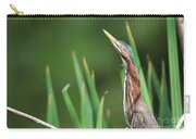 Green Heron Watches Carry-all Pouch