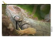 Green Iguana Costa Rica Carry-all Pouch