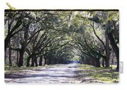 Green Lane Carry-all Pouch by Carol Groenen