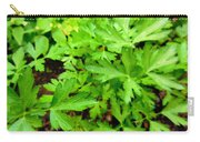 Green Parsley  4 Carry-all Pouch