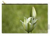 Green Tulips Carry-all Pouch