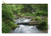 Greer Spring Branch 1 Carry-all Pouch