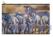 Grevy Zebra Party  7528 Carry-all Pouch