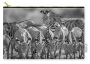 Grevy Zebra Party  7528bw Carry-all Pouch