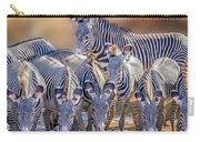 Grevy Zebra Party  7528c Carry-all Pouch