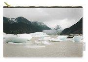 Grewingk Glacier Carry-all Pouch