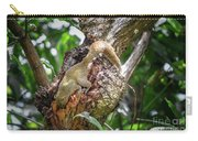 Grey Bellied Squirrel Carry-all Pouch