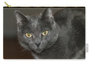 Grey Cat With Yellow Eyes Carry-all Pouch