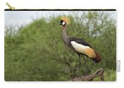 Grey Crowned Crane Carry-all Pouch by Yair Karelic