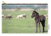 Grey Foal On Pasture Farm Scene Carry-all Pouch