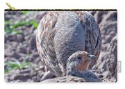 Grey Partridge Carry-all Pouch