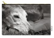Greyful Carry-all Pouch by Angela Rath