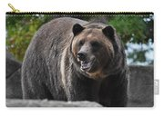 Grizzly Bear 3 Carry-all Pouch