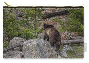 Grizzly Sow In Yellowstone Park Carry-all Pouch