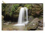 Grotto Falls Great Smoky Mountains Carry-all Pouch by Jemmy Archer