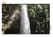 Grotto Falls Perspective Carry-all Pouch